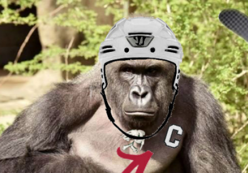 Sticks Out For Harambe